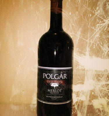 polgar-merlot-magnum