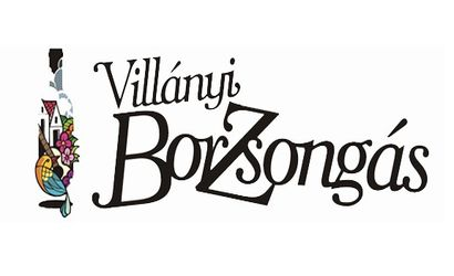 borzsongas-villany